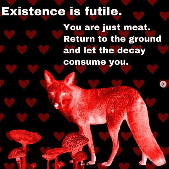 Canidae - Existence is futile. You are just meat. Return to the ground and let the decay consume you.