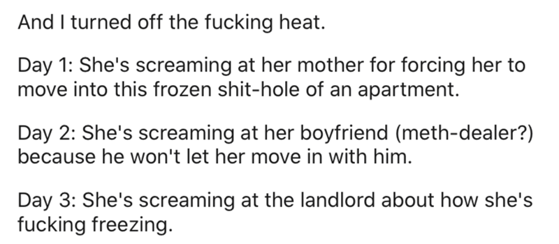 Text - And I turned off the fucking heat. Day 1: She's screaming at her mother for forcing her to move into this frozen shit-hole of an apartment. Day 2: She's screaming at her boyfriend (meth-dealer?) because he won't let her move in with him. Day 3: She's screaming at the landlord about how she's fucking freezing.