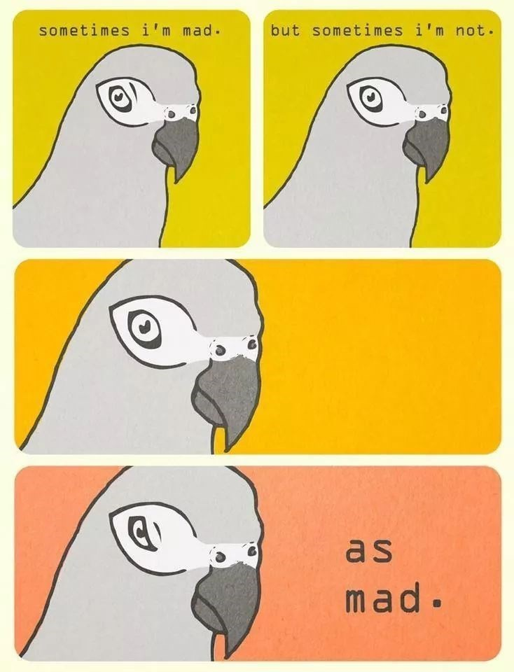 Bird - sometimes i'm mad. but sometimes i'm not. as mad.
