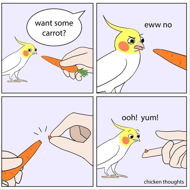 bird-want-some-eww-no-carrot-ooh-yum-chicken-thoughts