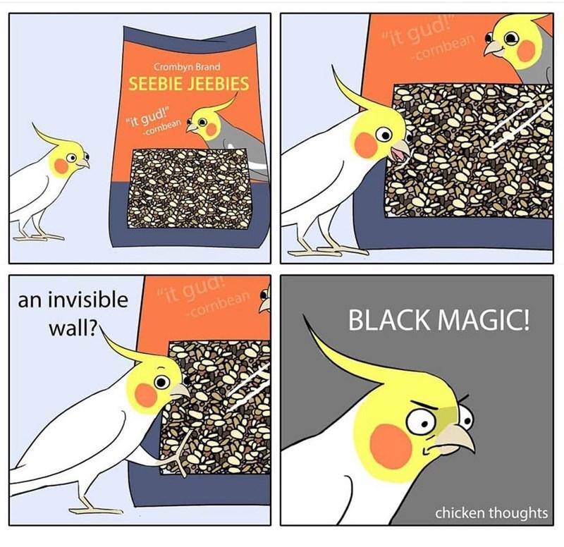 "Bird - Crombyn Brand SEEBIE JEEBIES ""it gud! -cornbean ""it gud!"" -cornbean an invisible ""it gua: cornbean wall? BLACK MAGIC! chicken thoughts"