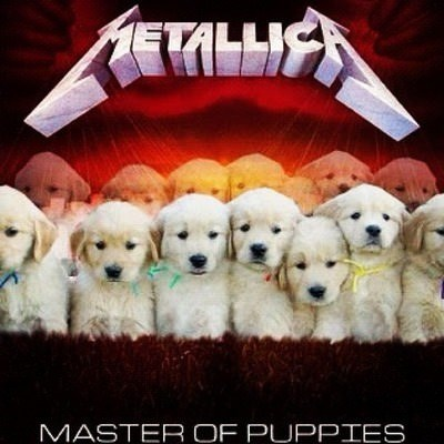 Vertebrate - METALLI MASTER OF PUPPIES