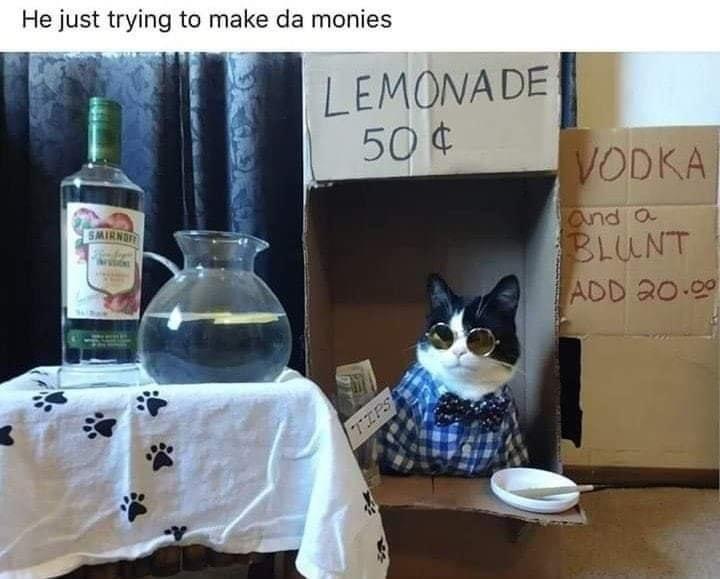 Cat - He just trying to make da monies LEMONA DE 50 ¢ VODKA SMIRNIT and a BLUNT ADD 20.90 TIPS