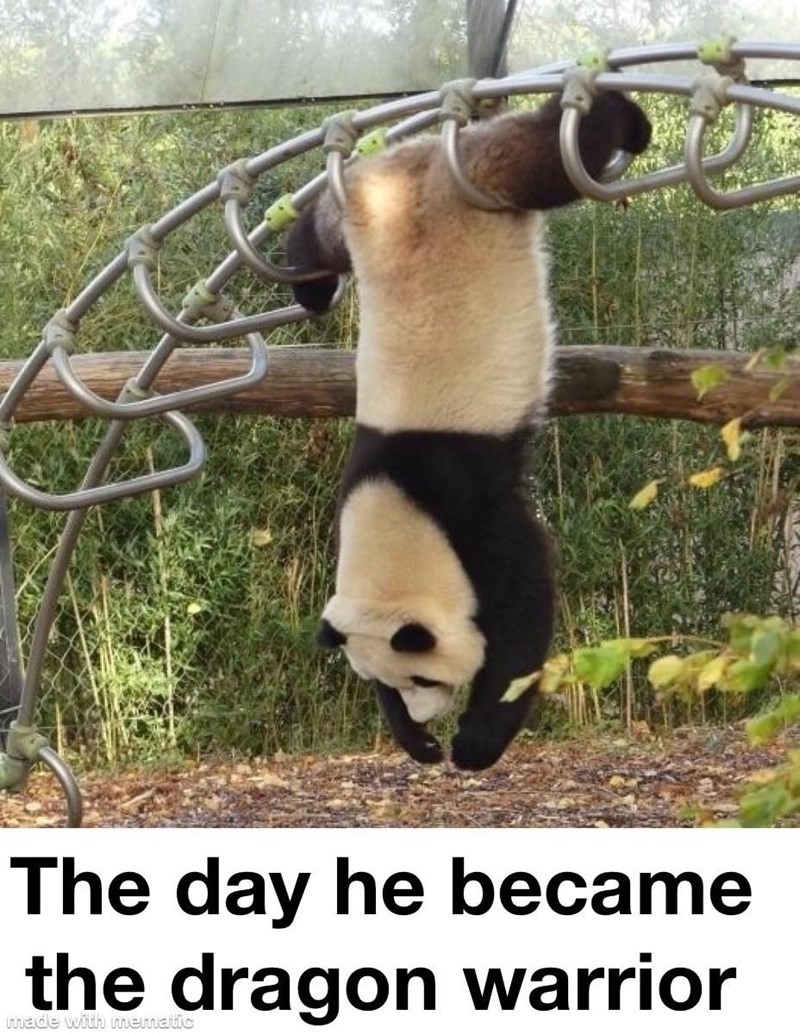 Panda - The day he became the dragon warrior made with mematic