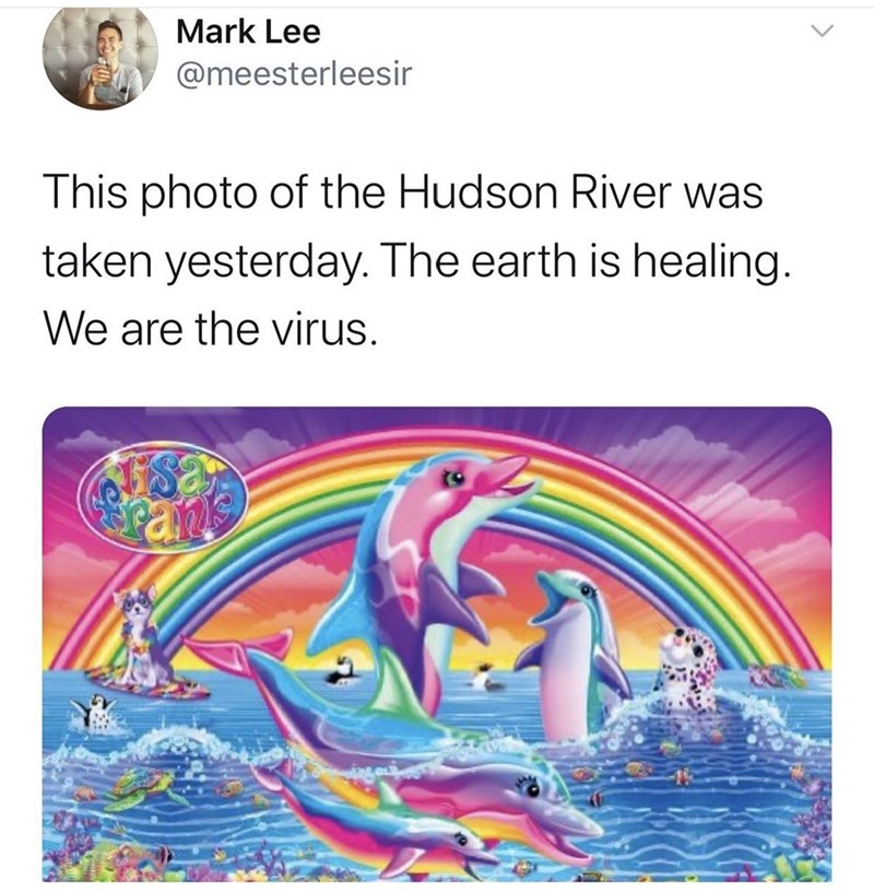 Text - Mark Lee @meesterleesir This photo of the Hudson River was taken yesterday. The earth is healing. We are the virus.