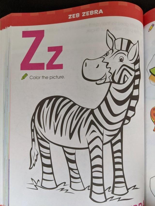 Zebra - ZEB ZEBRA Zz Color the picture.
