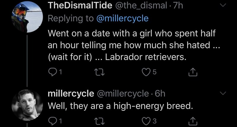 Text - TheDismalTide @the_dismal - 7h Replying to @millercycle Went on a date with a girl who spent half an hour telling me how much she hated ... (wait for it) ... Labrador retrievers. millercycle @millercycle · 6h Well, they are a high-energy breed.