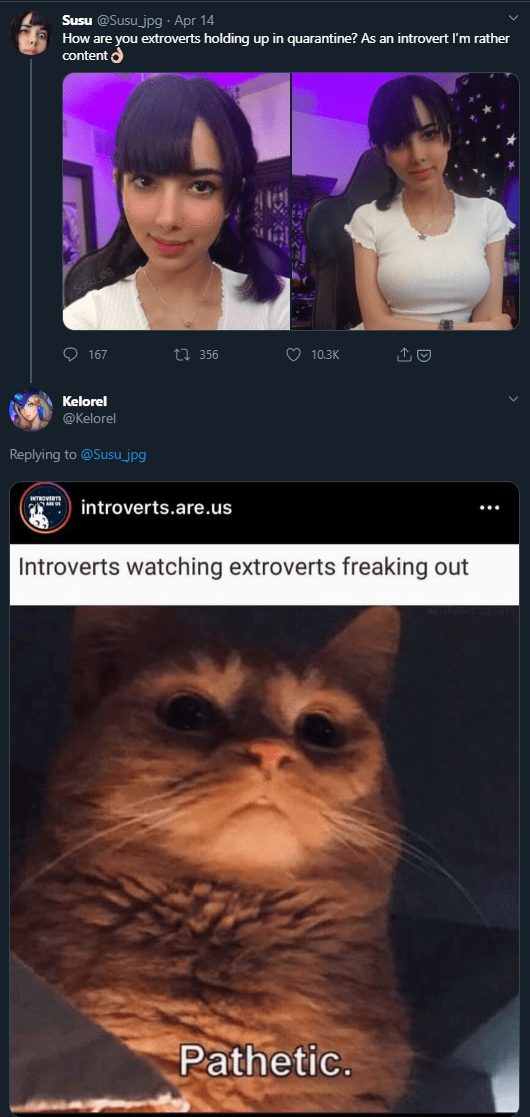 Face - Susu @Susu_jpg · Apr 14 How are you extroverts holding up in quarantine? As an introvert I'm rather content d O 167 27 356 O 10.3K Kelorel @Kelorel Replying to @Susu_jpg introverts.are.us Introverts watching extroverts freaking out Pathetic.