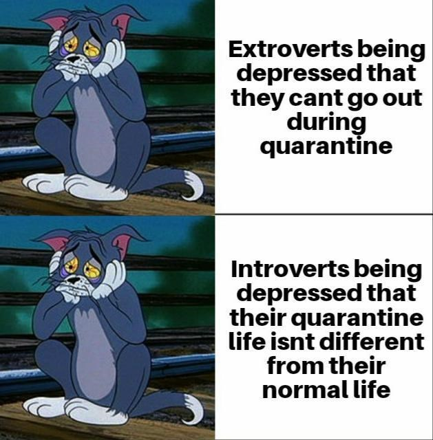 Cartoon - Extroverts being depressed that they cant go out during quarantine Introverts being depressed that their quarantine life isnt different from their normal life