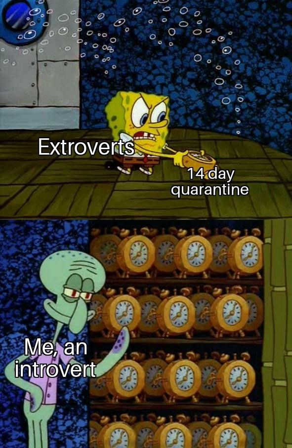 Adventure game - Extroverts 14 day quarantine Me, an introvert A