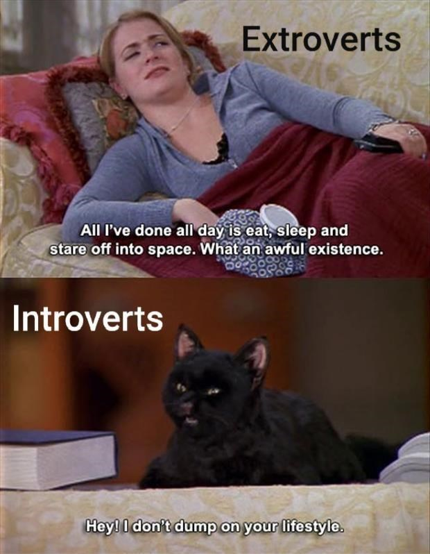 Cat - Extroverts All I've done all day is eat, sleep and stare off into space. What an awful existence. Introverts Hey! I don't dump on your lifestyle.