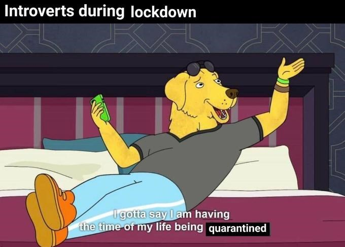Cartoon - Introverts during lockdown I gotta say l am having the time of my life being quarantined