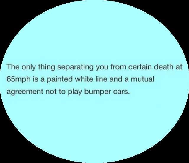 Text - The only thing separating you from certain death at 65mph is a painted white line and a mutual agreement not to play bumper cars.
