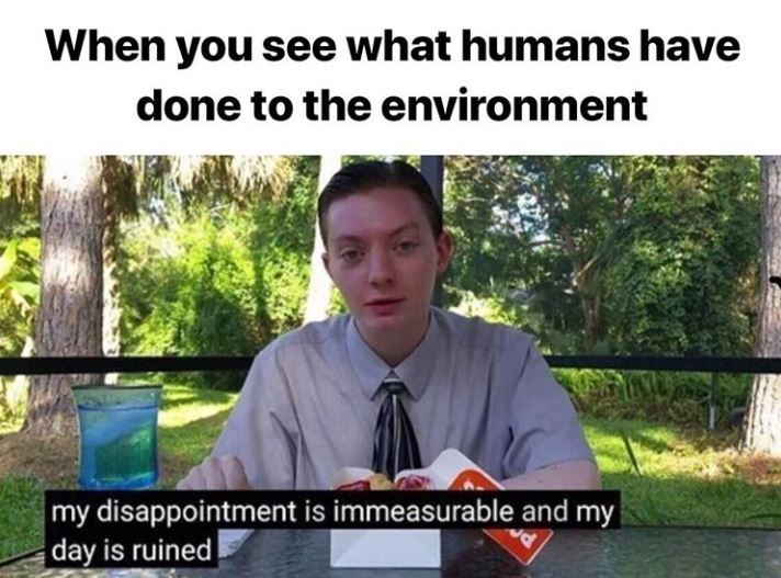 Photo caption - When you see what humans have done to the environment my disappointment is immeasurable and my day is ruined