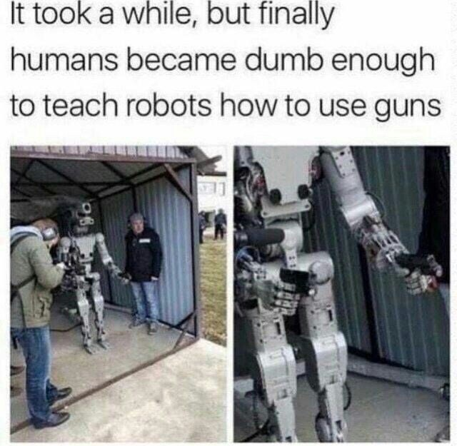 Human - It took a while, but finally humans became dumb enough to teach robots how to use guns