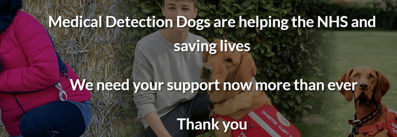 Dog breed - Medical Detection Dogs are helping the NHS and saving lives We need your support now more than ever DIABETES ALERT F Thank you