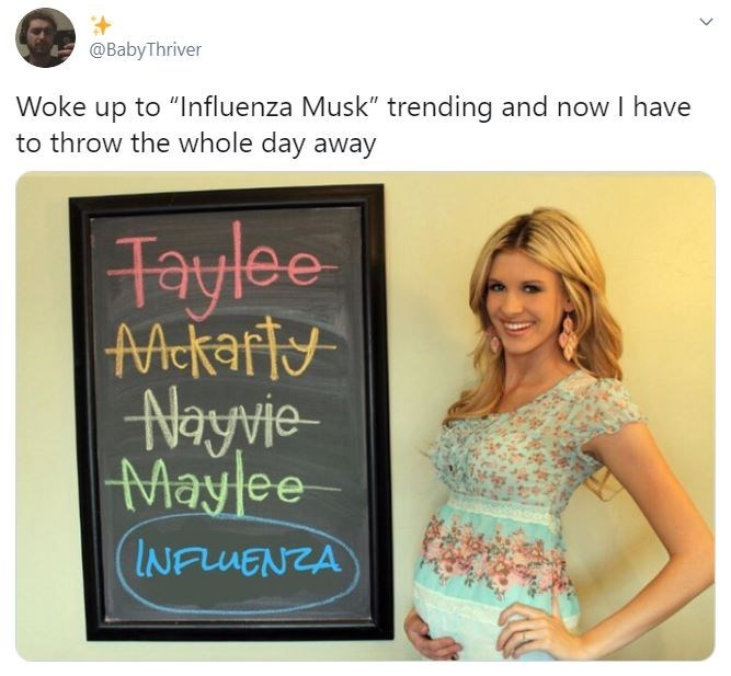 "Text - @BabyThriver Woke up to ""Influenza Musk"" trending and now I have to throw the whole day away Taylee जिer Nayvie- Maylee INFLUENZA"