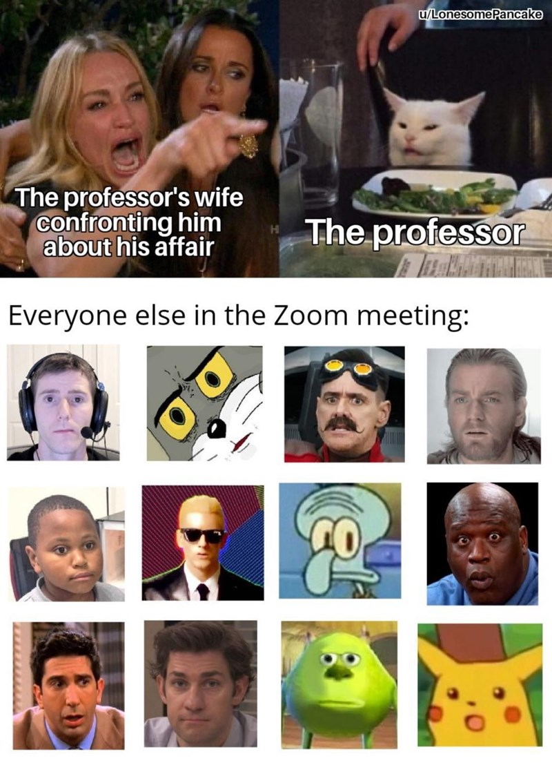 Facial expression - u/LonesomePancake The professor's wife confronting him about his affair The professor Everyone else in the Zoom meeting: