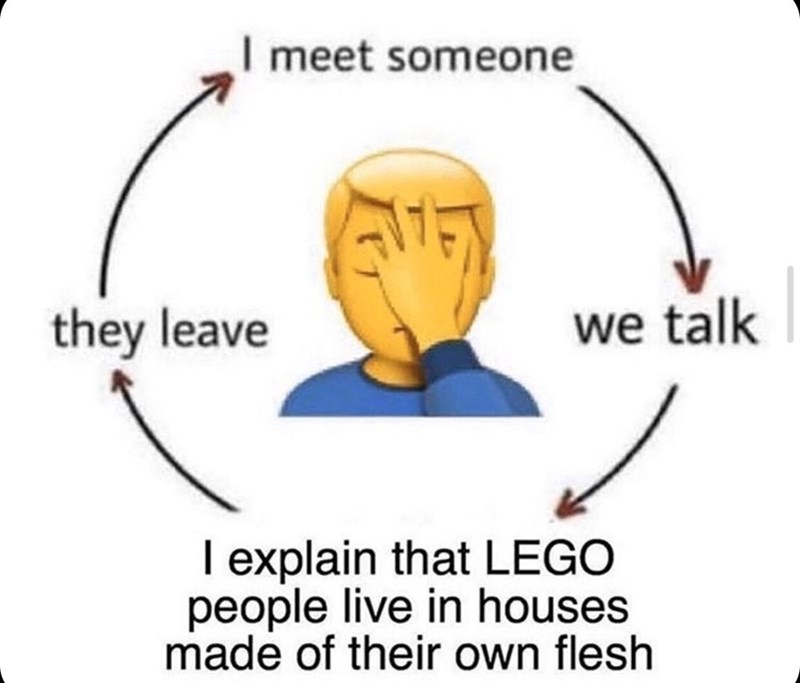Text - I meet someone they leave we talk I explain that LEGO people live in houses made of their own flesh