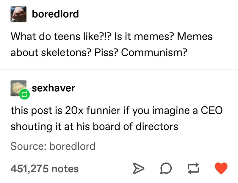 Text - boredlord What do teens like?!? Is it memes? Memes about skeletons? Piss? Communism? sexhaver this post is 20x funnier if you imagine a CEO shouting it at his board of directors Source: boredlord 451,275 notes