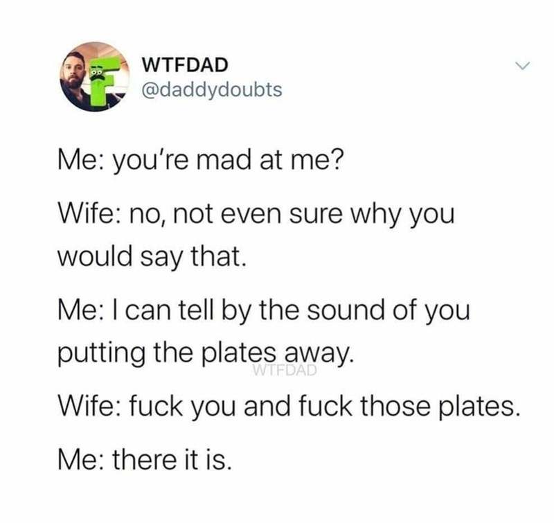 Text - WTFDAD @daddydoubts Me: you're mad at me? Wife: no, not even sure why you would say that. Me: I can tell by the sound of you putting the plates away. WTFDAD Wife: fuck you and fuck those plates. Me: there it is.