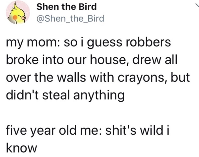 Text - Shen the Bird @Shen_the_Bird my mom: so i guess robbers broke into our house, drew all over the walls with crayons, but didn't steal anything five year old me: shit's wild i know