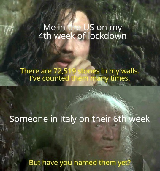 Photo caption - Me in the US on my 4th week of lockdown There are 72,519 stones in my walls. I've counted them many times. Someone in Italy on their 6th week But have you named them yet?