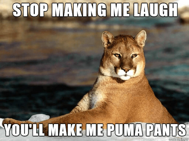 Vertebrate - STOP MAKING ME LAUGH YOU'LL MAKE ME PUMA PANTS iede on tngur