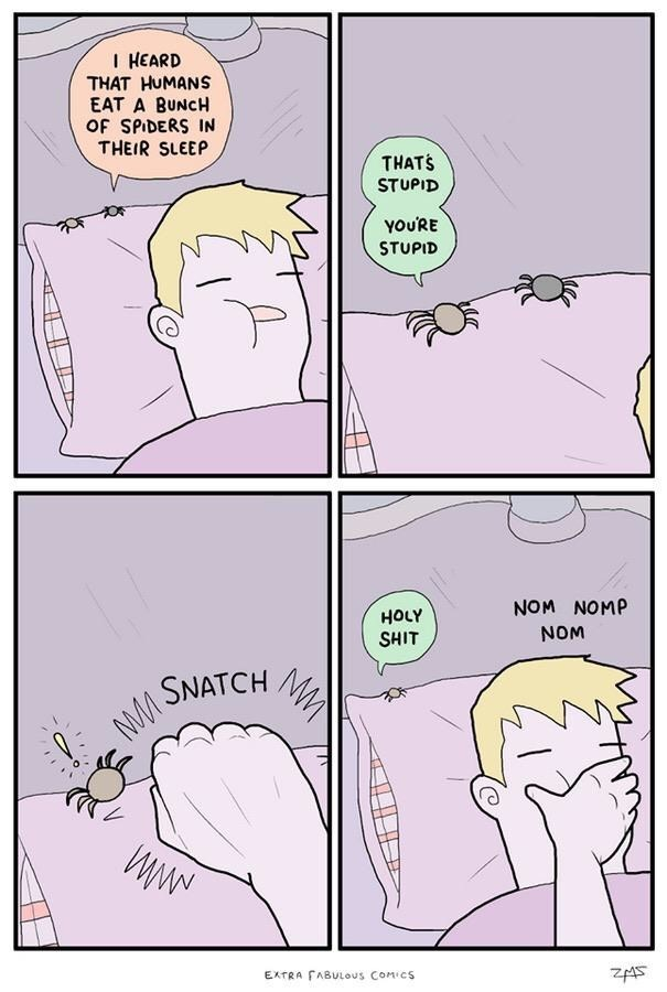 Text - I HEARD THAT HUMANS EAT A BUNCH OF SPIDERS IN THEIR SLEEP THATS STUPID YOU'RE STUPID NOM NOMP HOLY SHIT NOM SNATCH EXTRA FABULOous COMICS ZA5