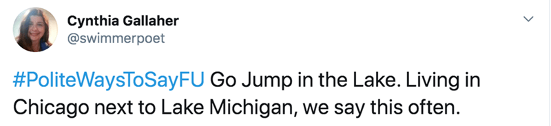 Text - Cynthia Gallaher @swimmerpoet #PoliteWaysToSayFU Go Jump in the Lake. Living in Chicago next to Lake Michigan, we say this often.