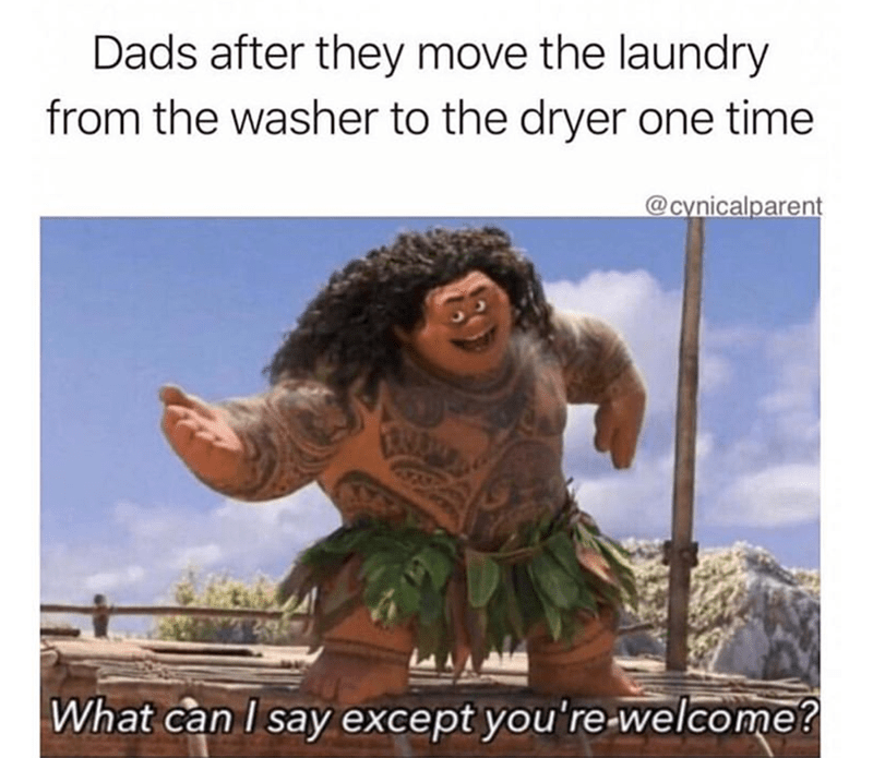 Text - Dads after they move the laundry from the washer to the dryer one time @cynicalparent What can I say except you're-welcome?