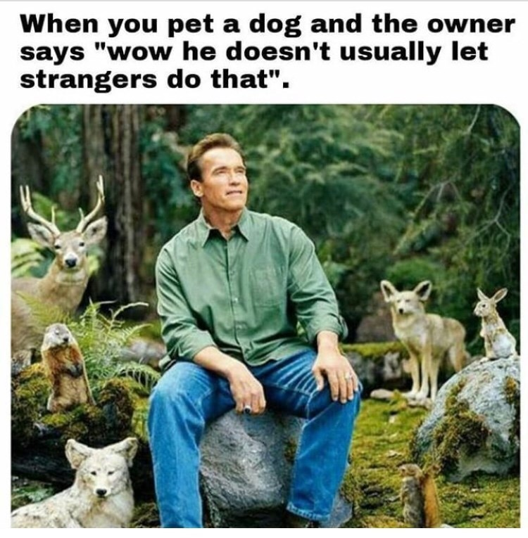 """Wildlife - When you pet a dog and the owner says """"wow he doesn't usually let strangers do that""""."""