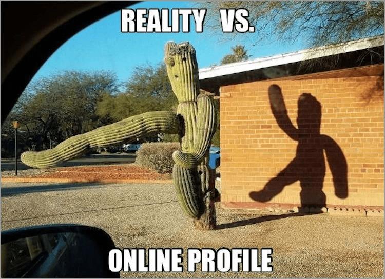 Cartoon - REALITY VS. ONLINE PROFILE