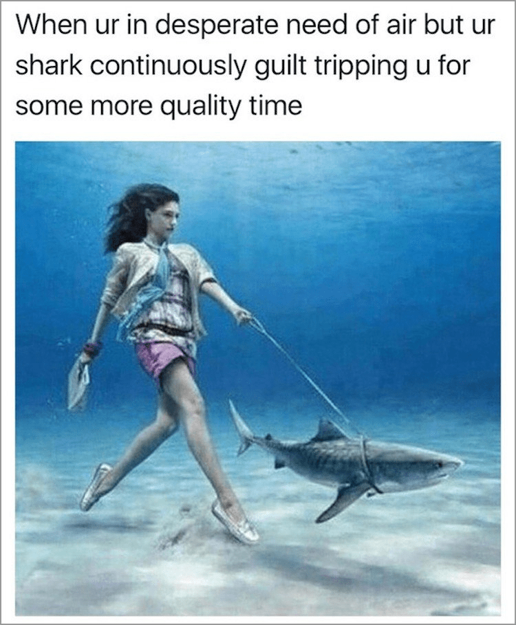 Adaptation - When ur in desperate need of air but ur shark continuously guilt tripping u for some more quality time