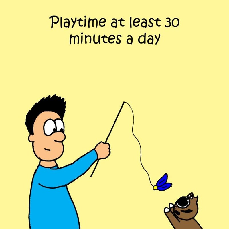 Cartoon - Playtime at least 30 minutes a day