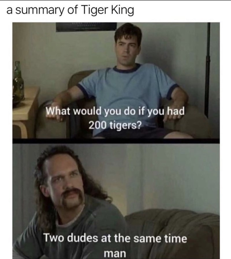 Facial expression - a summary of Tiger King What would you do if you had 200 tigers? Two dudes at the same time man
