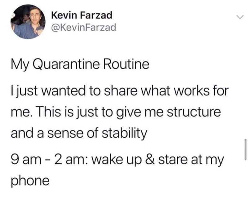 Text - Kevin Farzad @KevinFarzad My Quarantine Routine I just wanted to share what works for me. This is just to give me structure and a sense of stability 9 am - 2 am: wake up & stare at my phone