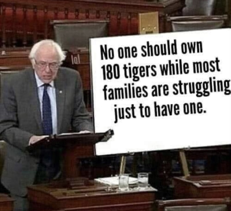 Speech - No one should own 180 tigers while most families are struggling just to have one. lal