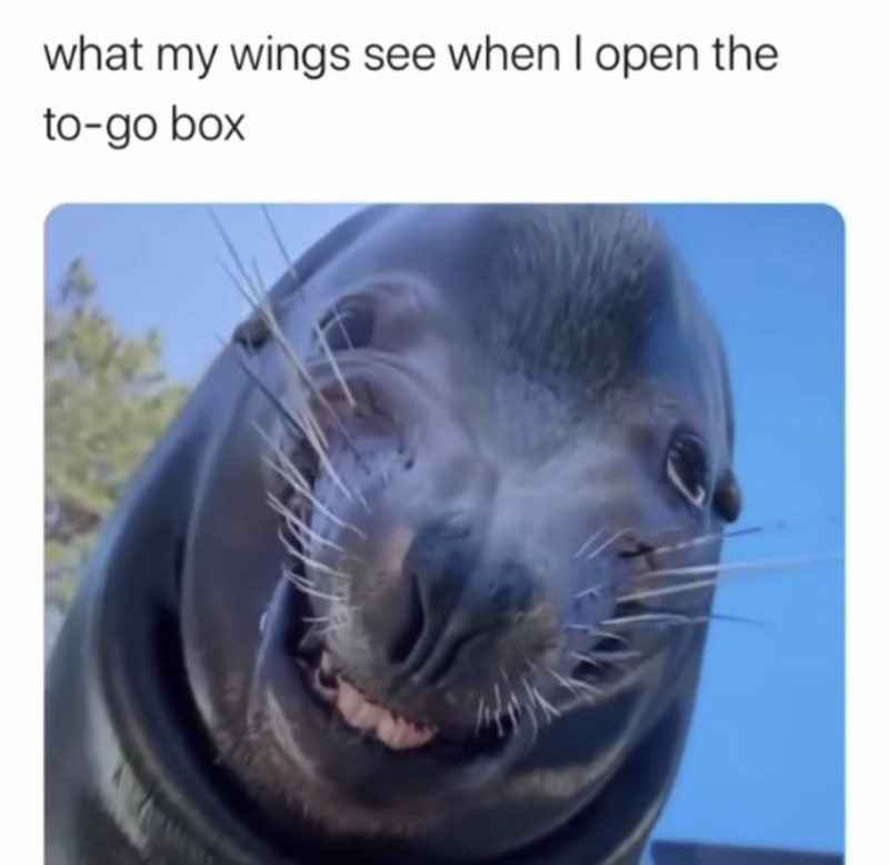 Seal - what my wings see when I open the to-go box