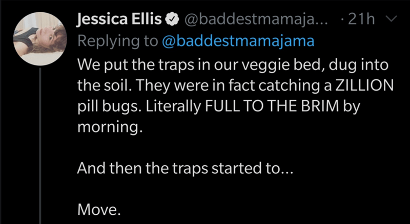 Text - Jessica Ellis O @baddestmamaja... · 21h v Replying to @baddestmamajama We put the traps in our veggie bed, dug into the soil. They were in fact catching a ZILLION pill bugs. Literally FULL TO THE BRIM by morning. And then the traps started to... Move.