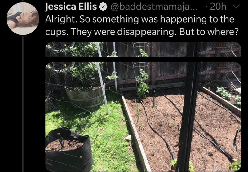 Soil - Jessica Ellis O @baddestmamaja... · 20h Alright. So something was happening to the cups. They were disappearing. But to where?