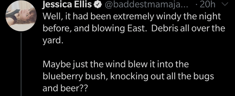 Text - Jessica Ellis O @baddestmamaja... · 20h Well, it had been extremely windy the night before, and blowing East. Debris all over the yard. Maybe just the wind blew it into the blueberry bush, knocking out all the bugs and beer??