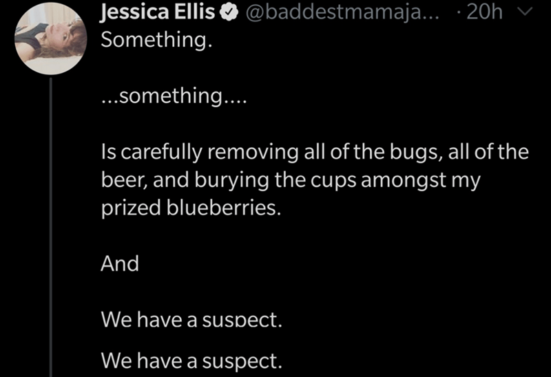 Text - Text - Jessica Ellis O @baddestmamaja... · 20h v Something. ..something.. Is carefully removing all of the bugs, all of the beer, and burying the cups amongst my prized blueberries. And We have a suspect. We have a suspect.