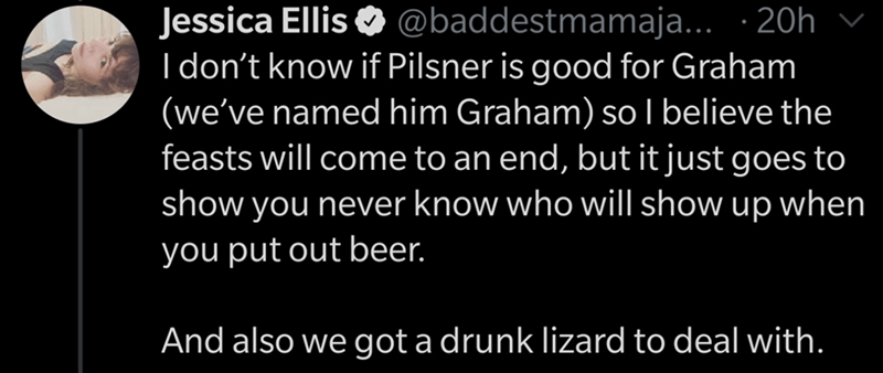 Text - Text - @baddestmamaja... · 20h Jessica Ellis O I don't know if Pilsner is good for Graham (we've named him Graham) so I believe the feasts will come to an end, but it just goes to show you never know who will show up when you put out beer. And also we got a drunk lizard to deal with.
