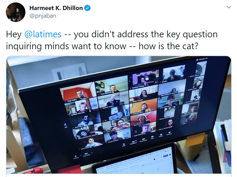 Product - Harmeet K. Dhillon @pnjaban Hey @latimes -- you didn't address the key question inquiring minds want to know -- how is the cat? Vanesa Chag Tove Barkare anerat Sean t Chere Amalns