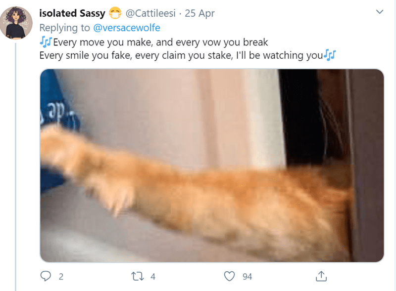 Cat - isolated Sassy @Cattileesi · 25 Apr Replying to @versacewolfe SS Every move you make, and every vow you break Every smile you fake, every claim you stake, l'll be watching yous 27 4 94
