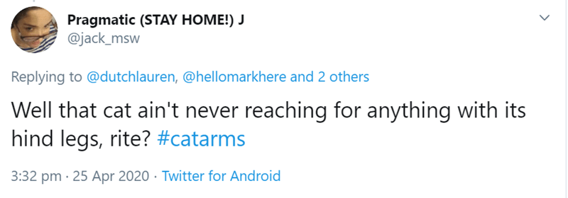 Text - Pragmatic (STAY HOME!) J @jack_msw Replying to @dutchlauren, @hellomarkhere and 2 others Well that cat ain't never reaching for anything with its hind legs, rite? #catarms 3:32 pm · 25 Apr 2020 · Twitter for Android