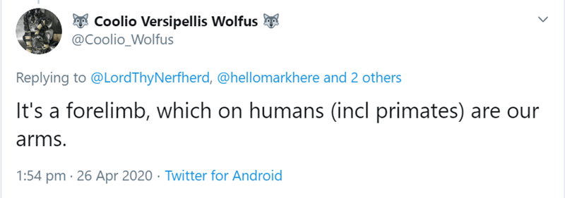 Text - A Coolio Versipellis Wolfus @Coolio_Wolfus Replying to @LordThyNerfherd, @hellomarkhere and 2 others It's a forelimb, which on humans (incl primates) are our arms. 1:54 pm · 26 Apr 2020 · Twitter for Android