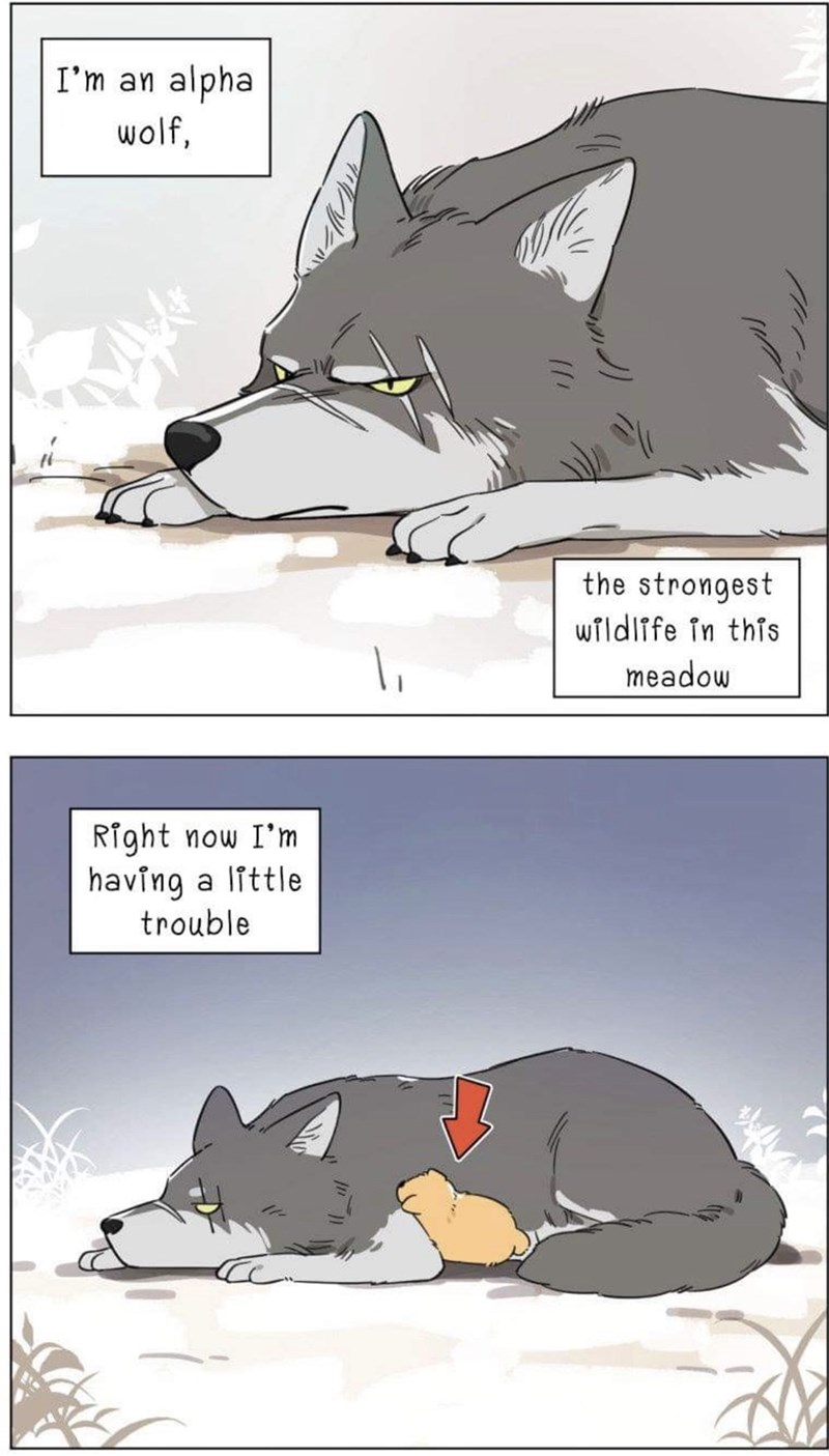 Cartoon - I'm an alpha wolf, the strongest wildlfe in this meadow Right now I'm having a little trouble