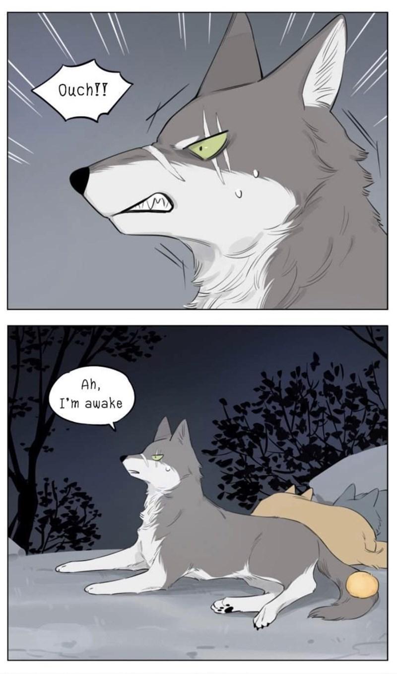 Cartoon - Ouch!! Ah, I'm awake